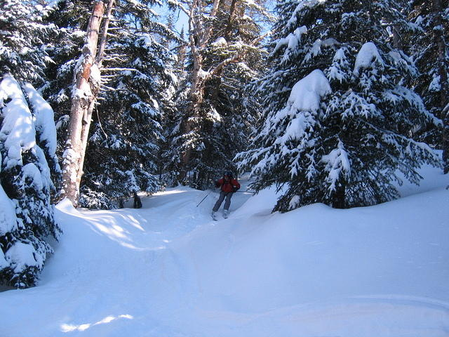 ADK_03-29-08_Don_marcy_ski_trail_a1