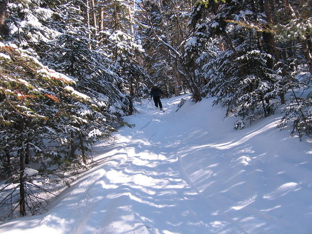 ADK_03-29-08_Mike_marcy_ski_trail_c1
